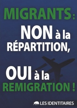 Migrants remigration