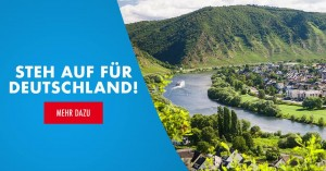 Allemagne marketing AfD 2